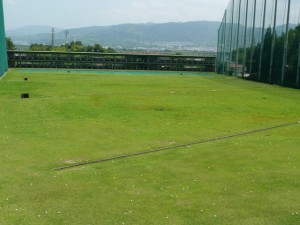 ゴルフフィールド